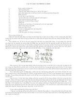 Tư liệu về nhóm Cacbon