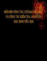 TAP HUAN HIEU TRUONG TIEU HOC - 5-8-2009