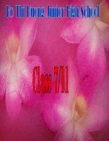 ENGLISH 7- LANGUAGE FOCUS 1