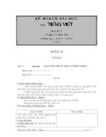 GA Tiếng Việt (tuần 11 đến 18)