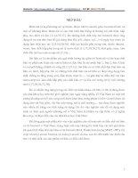điều chế sét hữu cơ từ bentonit Bình Thuận hàm lượng MMT