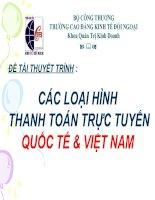 Các loại hình thanh toán trực tuyến quốc tế và Việt Nam