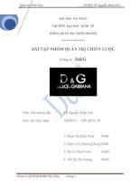 BÀI TẬP NHÓM QUẢN TRỊ CHIẾN LƯỢC Công ty  D&G