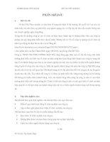 Nghiên cứu về vấn đề căn bản của tổ chức sự kiện và tình hình phát triển hoạt động tổ chức sự kiện ở Việt Nam