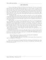 1 Báo cáo tổng hợp về một số phần hành kế toán chủ yếu và tình hình tổ chức hạch toán tại Công ty sản xuất ô tô daihatsu-vietindo