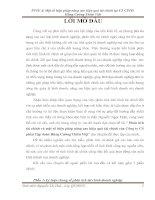 Phân tích  tài chính và một số biện pháp nâng cao hiệu quả tài chính của Công ty Cổ phần Tập đoàn Hùng Cường Thiên Việt