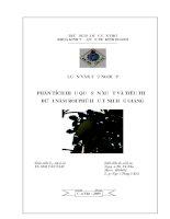 Phân tích hiệu quả sản xuất và tiêu thụ bưởi năm roi Phú Hữu, tỉnh Hậu Giang