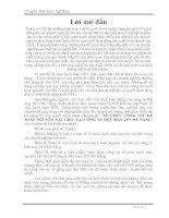 TỔ CHỨC CÔNG TÁC KẾ TOÁN NGUYÊN VẬT LIỆU TẠI CÔNG TY DỆT MAY 29/3 ĐÀ NẴNG