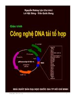 Cong nghe DNA tai to hop