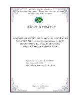 ĐÁNH GIÁ SƠ BỘ MỨC ĐỘ ĐA DẠNG DI TRUYỀN CỦA QUẦN THỂ ĐIỀU (Acanardium occidentale L.) HIỆN  ĐƯỢC TRỒNG TẠI TỈNH NINH THUẬN  BẰNG KỸ THUẬT RAPD VÀ AFLP (Trang bìa)