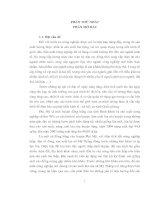 Điều tra tình hình sản xuất lúa tại xã Mỹ Thắng -  huyện Phù Mỹ - tỉnh Bình Định