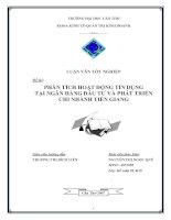 Phân tích hoạt động tín dụng tại ngân hàng đầu tư và phát triển chi nhánh Tiền Giang