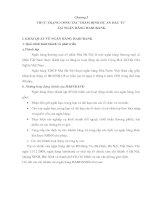 GIẢI PHÁP NHẰM  GÓP PHẦN HOÀN THIỆN CÔNG TÁC THẨM ĐỊNH DỰ ÁN ĐẦU TƯ TẠI HABUBANK