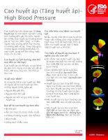 Cao huyết áp - High Blood Pressure