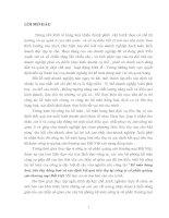 50 Kế toán hàng hoá, tiêu thụ hàng hoá và xác định kết quả tiêu thụ tại Công ty cổ phần quảng cáo thương mại Đất Việt (78 tr)