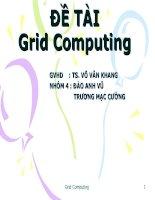 De Tai Grid Computing