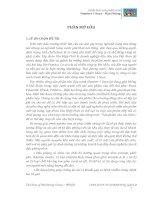 CHIẾN LƯỢC KINH DOANH CỦA TẬP ĐOÀN TÂN HIỆP PHÁT