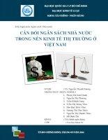 Cân đối ngân sách nhà nước trong nền kinh tế thị trường ở Việt Nam