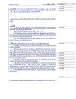 bảo hiểm xe cơ giới và trục lợi bảo hiểm xe cơ giới