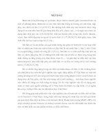 Nghiên cứu về bentonit và điều chế sét hữu cơ từ bentonit ở Việt Nam