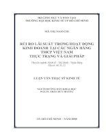 156 Rủi ro lãi suất trong hoạt động kinh doanh tại các Ngân hàng Thương mại cổ phần Việt Nam - Thực trạng và Giải pháp