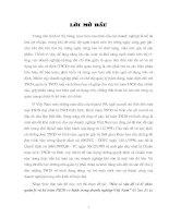 208 Một số vấn đề về tổ chức quản lý & Kế toán tài sản cố định vô hình trong doanh nghiệp Việt Nam