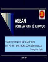 THÀNH TỰU KINH TẾ VÀ THÁCH THỨC ĐỐI VỚI VIỆT NAM TRONG CỘNG ĐỒNG ASEAN