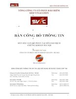 Bản công bố thông tin  bán đấu giá cổ phần tại sở giao dịch chứng khoán Hà Nội