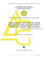 232 Ứng dụng mô hình kinh tế lượng đê phân tích hiệu quả sản xuất ở trang trại trong tỉnh An Giang