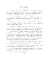 XÂY DỰNG CHIẾN LƯỢC SẢN XUẤT KINH DOANH MỞ RỘNG THỊ TRƯỜNG NỘI ĐỊA CỦA XÍ NGHIỆP MAY XUẤT KHẨU TEXTACO