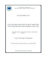 Luận văn thạc sĩ về Các giải pháp thúc đẩy sự phát triển bền vững thị trường chứng khoán Việt Nam