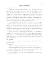 NGHIÊN CỨU KHẢ NĂNG GÂY BỆNH CHO CHUỘT Ở CÁC CHỦNG SALMONELLA CÓ NGUỒN GỐC TỪ BỆNH PHẨM, THỰC PHẨM  (Tổng quan)