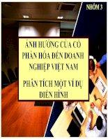 Ảnh hưởng của cổ phần hóa đến doanh nghiệp Việt Nam, phân tích một số ví dụ điển hình