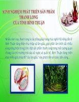 Kinh nghiệm phát triển sản phẩm thanh long của tỉnh Bình Thuận