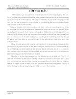 phân tích báo cáo tài chính  của Công Ty Cổ Phần Vận Tải và Thuê tàu