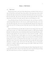 KHẢO SÁT SINH TRƯỞNG MỘT CHỦNG NẤM VÂN CHI  ĐEN (Trametes versicolor) CÓ NGUỒN GỐC  TỪ TRUNG QUỐC  (Tổng hợp)