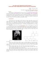 XÁC ĐỊNH HÀM LƯỢNG ĐỘC TỐ AFLATOXIN B1  TRONG BẮP VÀ ĐẬU PHỘNG BẰNG PHƯƠNG PHÁP SẮC KÍ BẢN MỎNG