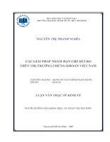 Luận văn thạc sĩ về các giải pháp nhằm hạn chế rủi ro trên thị trường chứng khoán Việt Nam