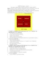 SWOT Analysis-lesson