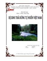Hệ sinh thái rừng tự nhiên Việt Nam