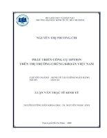 Luận văn thạc sĩ về Phát triển công cụ Option trên thị trường chứng khoán Việt Nam