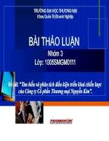 Tìm hiểu và phân tích điều kiện triển khai chiến lược của Công ty Cổ phần Thương Mại Nguyễn Kim