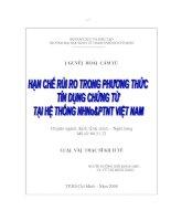 166 Hạn chế rủi ro trong phương thức tín dụng chứng từ tại hệ thống Ngân hàng nông nghiệp và phát triển nông thôn Việt Nam