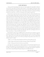 Phân tích cơ sở lý luận về hoạch định tài chính của công ty Airgas, Inc quý I/2010