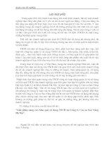 169 Nâng cao hiệu quả sử dụng tài sản cố định tại Công ty Cao su Sao Vàng Hà Nội (44tr)