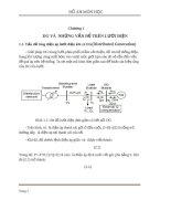 Đồ án Giải pháp DG trong lưới phân phối