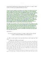 GIẢI PHÁP NHẰM ĐẨY MẠNH THU HÚT ĐẦU TƯ TRỰC TIẾP NƯỚC NGOÀI TẠI THÀNH PHỐ ĐÀ NẴNG