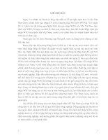 NHỮNG THÁCH THỨC ĐỐI VỚI HÀNG NÔNG SẢN VIỆT NAM KHI GIA NHẬP WTO VÀ GIẢI PHÁP KHAI THÁC