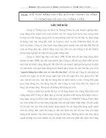 GIẢI PHÁP NÂNG CAO HIỆU QUẢ KINH DOANH TẠI CÔNG TY THƯƠNG MẠI VÀ DỊCH VỤ THĂNG THIÊN