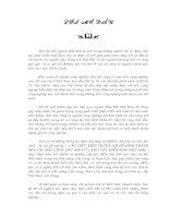 ỨNG DỤNG CÁC PHƯƠNG PHÁP ĐỊA VẬT LÝ GIẾNG KHOAN ĐỂ PHÂN VỈA, ĐÁNH GIÁ ĐỘ RỖNG, ĐỘ BÃO HOÀ CHẤT LƯU CHO GIẾNG RB-XX – MỎ RUBY